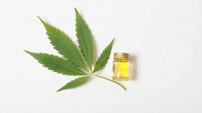 Know in Detail about Why CBD Essential Oils are a Favourite of All